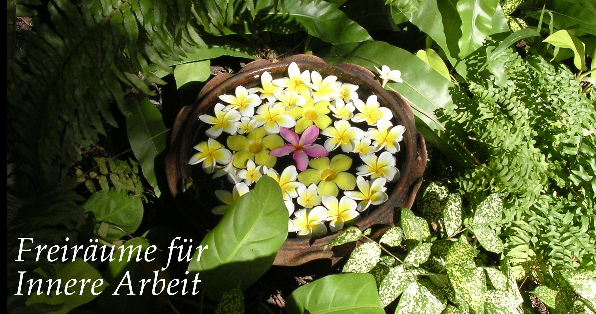 Blumenschüssel1
